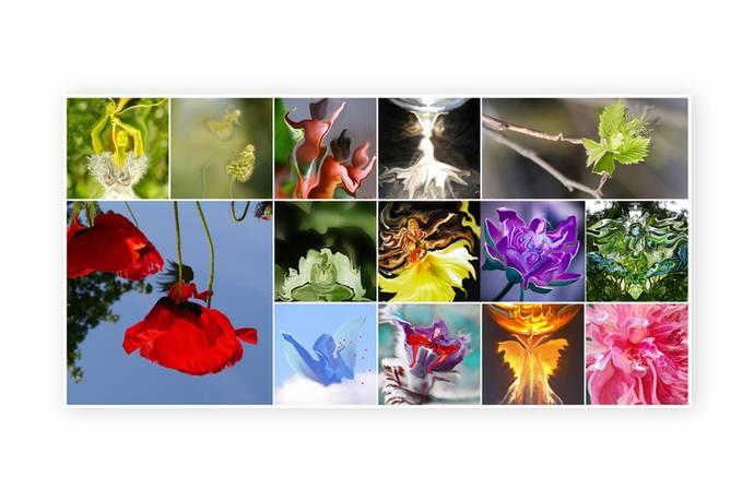 Collage op plexiglas